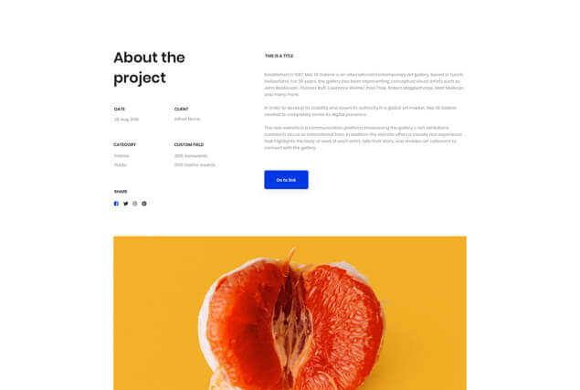 landing-page-single-portfolio-layout-12
